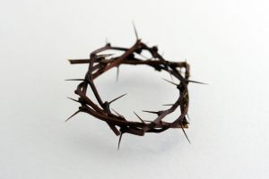 crown-of-thorns.jpg